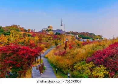 Namsan park at Autumn in South Korea.