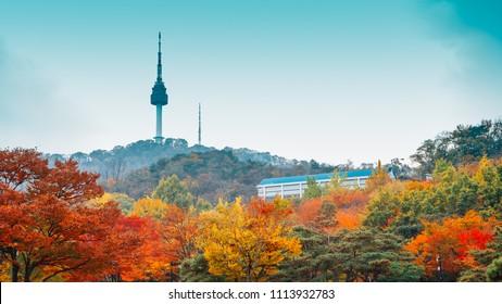 Namsan Seoul Tower with autumn maple trees in Korea