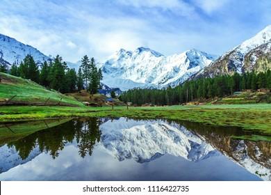 Nanga Parbat the mountain killer