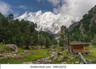 Nanga Parbat mountain in a morning at Bayel camp, Fairy Meadow, Pakistan, Asia