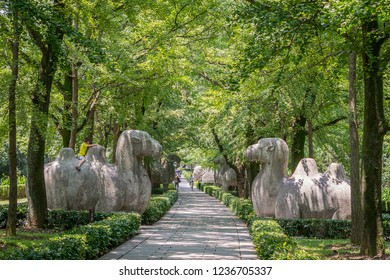 Nanjing / China - July 31th 2015: Elephant Road of the Ming Xiaoling Mausoleum, a tomb of the Hongwu Emperor, the founder of the Ming dynasty, UNESCO World Heritage site, located east of Nanjing,