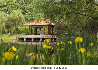 NANJING, CHINA - MAY 6, 2016: garden with a lake, water lilies and a pavilion at the Purple Mountain park