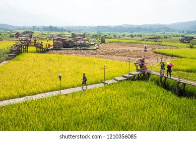 Nan,Thailand - October 8, 2018 : Tourists are walking in rice field at Wat Sri Mong Kol, A Thai temple in Nan province - northern of Thailand.