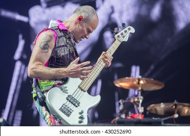 Napa, CA/USA - 5/29/16: Flea of Red Hot Chili Peppers performs at BottleRock 2016 in Napa, Ca.