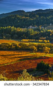 Napa valley in fall
