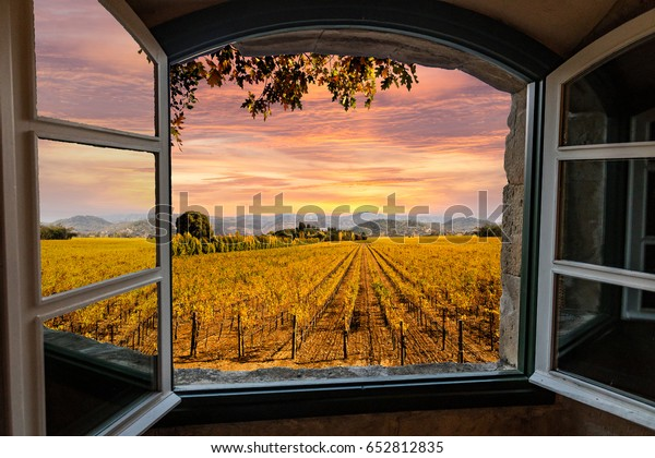 Napa Valley Vineyards in Autumn Colors, Sunrise Sky View Through a Window