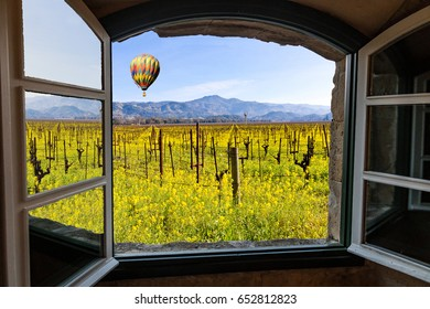 Napa Valley Vineyards in Spring, Wild Mustard Flowers Blooming, Hot Air Balloon, Mountains and Sky View Through a Window