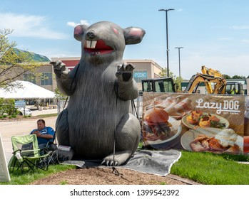 Naperville, IL / USA - May 15, 2019: A giant inflatable rat marks the site of a labor union protest against non-union trades working at a construction site for a new Lazy Dog restaurant.