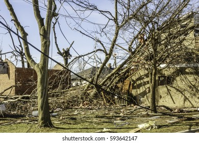 NAPLATE, IL/USA - MARCH 3, 2017: Power and telephone lines hang helter-skelter among bare trees blasted by an EF-3 (enhanced Fujita scale) tornado that wreaked havoc in this small town on February 28.