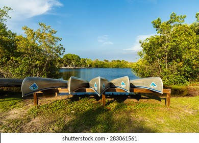 Naples, FL USA - May 20, 2015:  Canoes ready for rental at the Collier-Seminole state park along Highway 41 in the popular Everglades.