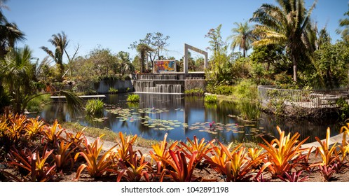 Naples, Florida, USA  March 4, 2018: Reflective pond with water lilies and plants at the Naples Botanical Gardens in Naples, Florida. Editorial use.