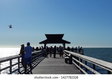 Naples, FL/USA: Feb 28, 2019 - Visitors gather at classic landmark The Pier, popular for exquisite sunsets, as blazing sun begins to set. A seagull flies nearby in the cloudless blue sky.