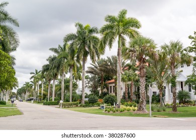 NAPLES, USA - DEC 10, 2015: Streetscene with houses and palm trees of 13th Avenue South in the city of Naples, Collier county, Florida