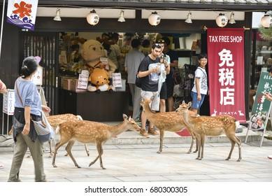 NARA, JAPAN - CIRCA SEPTEMBER, 2016: Deer in front of tourist shop in Nara, Japan