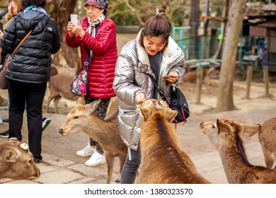 Nara, Japan, January 15 2019 : A beautiful  tourist woman handed cracker to deer in Nara park. Nara park is one public park of the oldest in Japan and tourist popular destination when come to Nara.