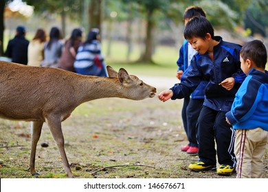 NARA, JAPAN - NOVEMBER 18: Children feed wild deer senbei crackers November 18, 2012 in Nara, JP. Once considered divine and sacred, the deer of Nara are now instead designated as National Treasures.