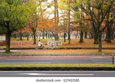 Nara, Japan - November 21, 2016: Local people are riding bikes along the street in Nara, close to Nara park, Nara, Japan