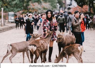 Nara, Japan,  November 22, 2018 : Pretty asian girl feeds with deer biscuit at Nara wild deer in a public park of Nara, Japan.a t Nandaimon Gate of Todaiji