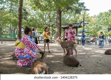 Nara, Japan: October 17, 2018:  Deer and tourists in Nara Park on a sunny day.  Nara Park is one of the oldest parks in Japan and has about 1,500 deer.