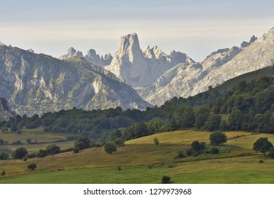 Naranjo de Bulnes (Picu Urriellu) - iconic limestone peak and valley with beech trees in summer. Picos de Europa National Park Cantabria Spain.