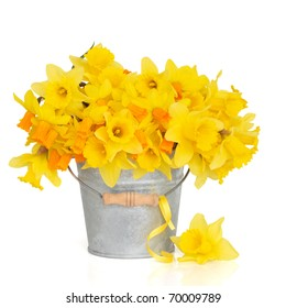 Narcissus and daffodil spring flower arrangement in a distressed aluminum bucket with a yellow ribbon and one loose daffodil, over white background.