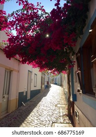 Narrow alley with pink Bougainvillea. Picturesque village Ferragudo (Algarve, Portugal). Strolling around the small town with its narrow streets. Flower tendrils grow in front of the houses.