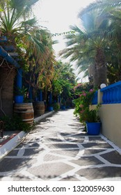 narrow alley through the palm bay of Sissi on the mediterranean isle Crete in Greece