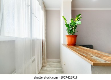 Narrow bright loggia combined with living room. Indoor flower in pot standing on partition between balcony and room.