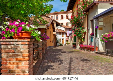 Narrow cobblestone street and typical houses decorated with flowers in town of Barolo, Piedmont, Northern Italy.
