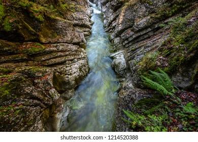 narrow creek and cliffs covered with moss and fern Rettenbachklamm - Bad Ischl Austria