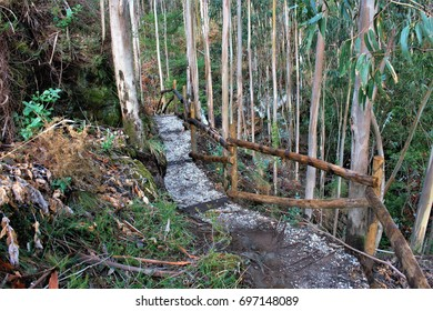 Narrow and dangerous path in the forest to see a waterfall, The well of hell in Serantes, A Coruna, Galicia, Spain,