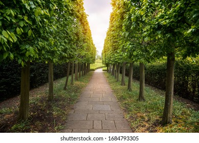 Narrow footpath lined with trees and hedges in  public park on a spring day