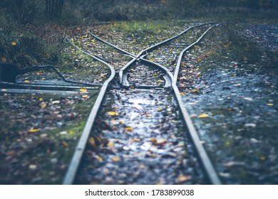 narrow gauge railway - railway turnout - rails in the autumn forest, rainy weather