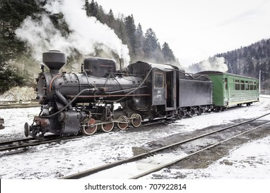 Narrow Gauge Steam Train in Poland