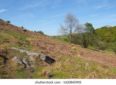 a narrow grass path on high rocky moorland above crimsworth dean valley and hardcaslte crags forest in west yorkshire