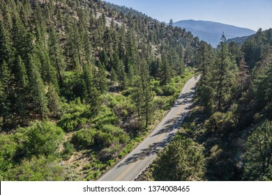 Narrow highway leads through a forested valley in the mountains of southern California.