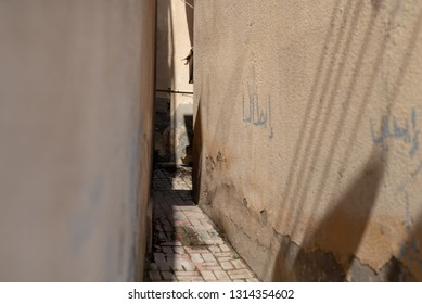 Narrow lane with graphitis in the historical district of Matrah, City of Muscat, Sultanate of Oman.