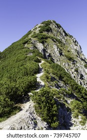 Narrow mountain path in summer. Way to the summit.