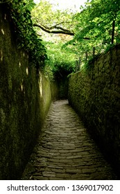 Narrow path on the descent of the philosopher's walk at Heidelberg.