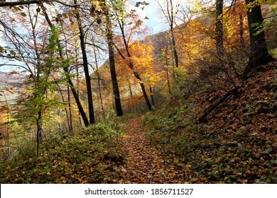 Schmaler Weg auf einem Berghang im Herbst mit bunten Eindrücken.