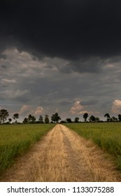 narrow path surrounded by fields in front of menacing clouds
