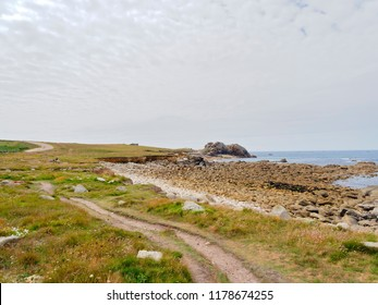 A narrow path winds between the grass and wildflowers at the top of a rock strewn beach in Brittany.