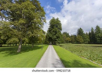 Narrow Road, Brdo pri Kranju - Slovenia - Shutterstock ID 598210718
