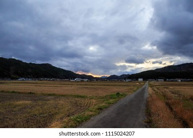 Narrow road through dry autumn rice fields toward dramatic sunset