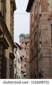 narrow side street in the Italian town of Lucca in Tuscany with old house facades and tower Guinigi