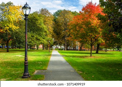 Narrow Straight Paved Path Lined with Old Fashioned Street Lights and Colourful Trees on a Sunny Autumn Day. New Haven, CT.