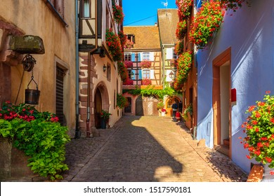Narrow street and beautiful historic houses in old part of Riquewihr village, wine route in Alsace region, France