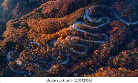 Narrow street between woodland, drone's view - Irohazaki winding road, Nikko