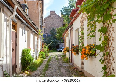 Narrow street with greenery on the walls in Vilnius, Lithuania