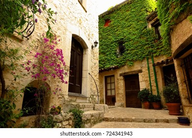 Narrow street with ivy in medieval village of Tourrettes-sur-Loup, Provence, France